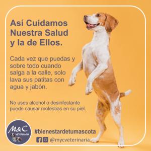 MYC-Dog1