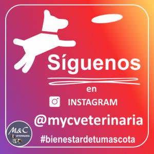 Sïguenos en Instagram